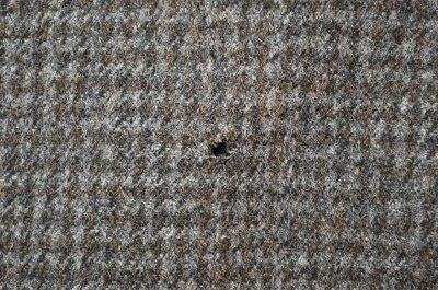 画像1: 60's Penney's ステンカラー ウールコート